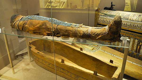 mummia museo egizio bologna