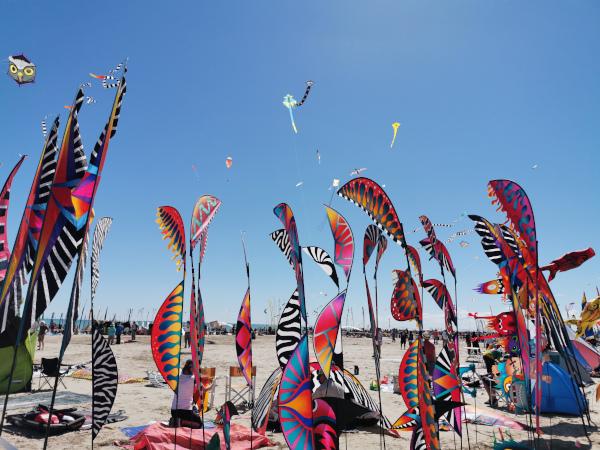 Artevento 2021: il Festival dell'aquilone a Cervia