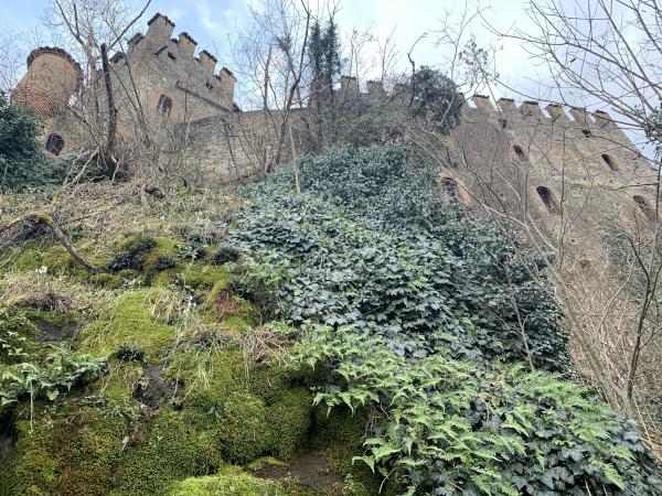 vista del castello dal basso
