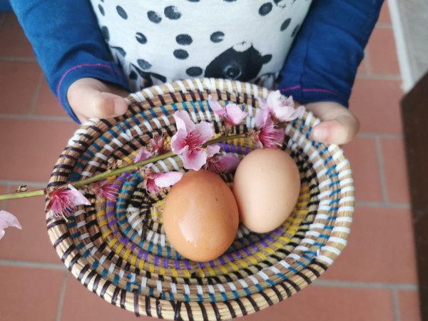 uova benedette su un cestino con ramo di pesco