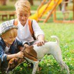 bambini giocano con un cagnolino
