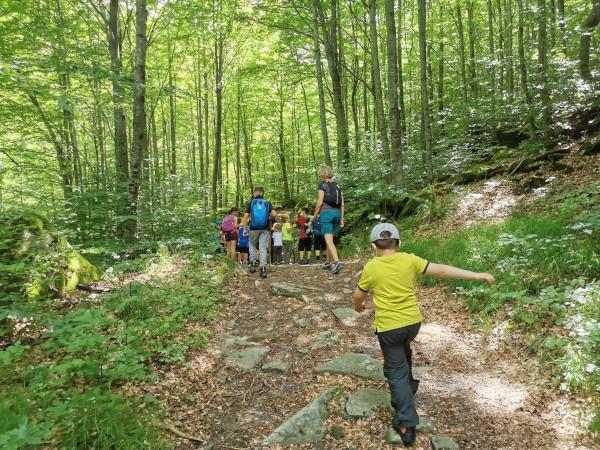 bimbi sul sentiero nel bosco