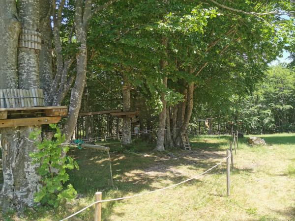 parco avventura nel bosco